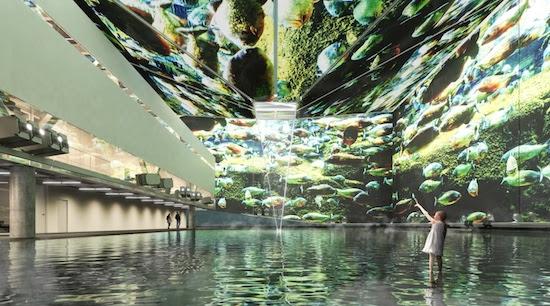 Un peu d'Amazonie à Dubaï